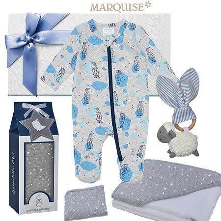 Marquise Penguin Baby Boy Hamper