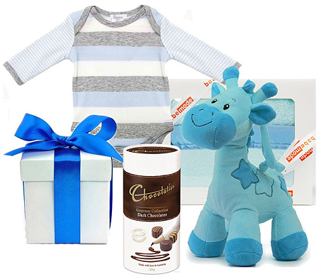 The Plum Collection Baby Boy Hamper