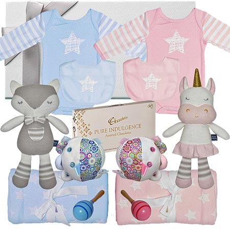 Deluxe Twin Girl & Boy Baby Hamper